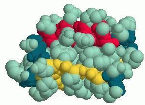 Proteini gradniki življenja